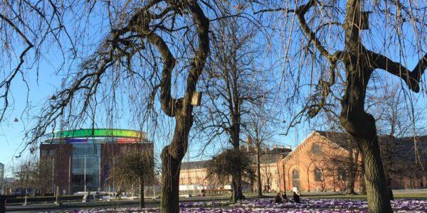 Rådhusparken | 8000 Aarhus C.